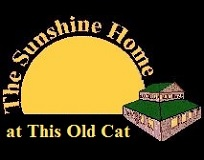 The Sunshine Home at This Old Cat